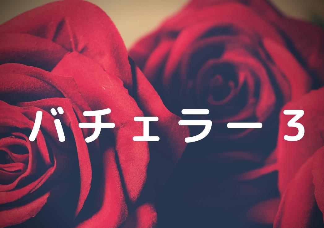 野原 バチェラー 遥 3 【バチェラー3】野原遥さんが巻き込まれたグアムの事件とは?